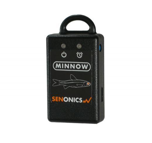 Sen_minnow-t_w