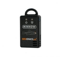 Sen_minnow-th_w